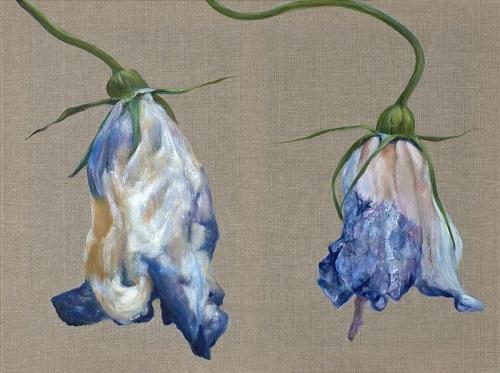 Wiesen-Glockenblumen (Blumenmalerei)